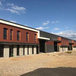 Vente Entrepôt Meyzieu 3909,5 m²