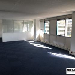 Location Bureau Nice 1774 m²