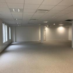 Location Bureau Chessy 155 m²