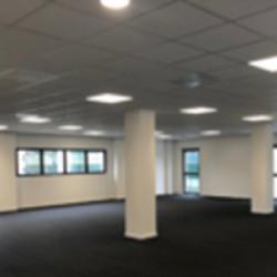 Location Bureau Lyon 8ème 795 m²