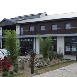 Location Bureau Serris 63 m²