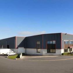 Location Local d'activités Saint-Soupplets 1194 m²
