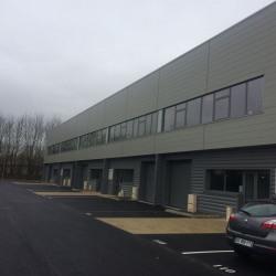 Location Local d'activités Bussy-Saint-Martin 681 m²