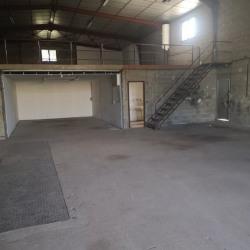 Location Local d'activités Castelnau-le-Lez 675 m²