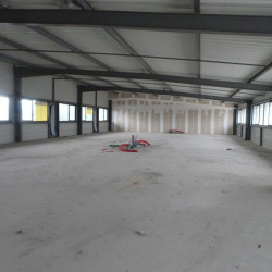 Location Local commercial Lombez 344 m²