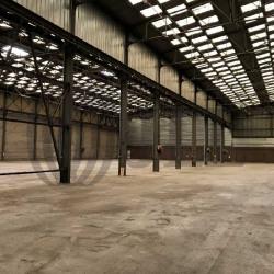 Location Local d'activités Vitry-sur-Seine 4500 m²
