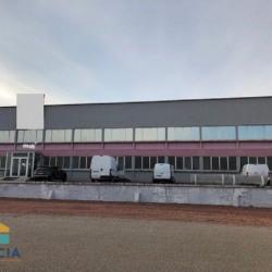 Location Local d'activités Roanne 4000 m²