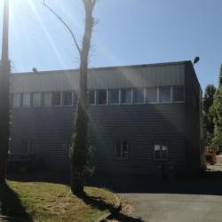 Location Bureau Vertou 23 m²