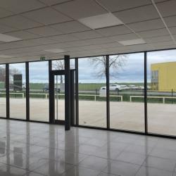 Location Local d'activités Lèves 570 m²