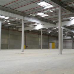 Location Entrepôt Survilliers 26500 m²