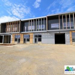 Vente Local d'activités Collégien 503 m²
