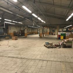 Vente Entrepôt Nanc-lès-Saint-Amour 5300 m²