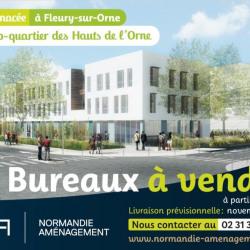 Vente Bureau Fleury-sur-Orne 59 m²