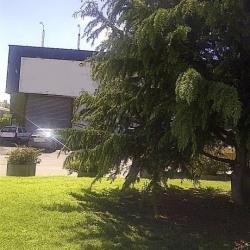 Location Local commercial Plaisance-du-Touch 600 m²