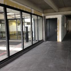 Vente Local commercial Six-Fours-les-Plages 317 m²