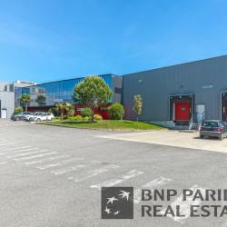 Vente Local d'activités Saint-Alban 5014 m²