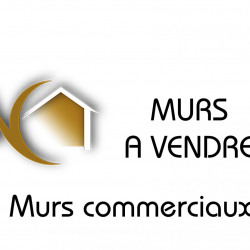 Vente Local commercial Saint-Étienne 901 m²