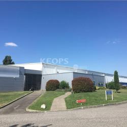 Location Entrepôt Lespinasse 11734 m²
