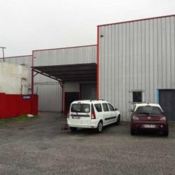 Location Local d'activités Lormont 270 m²