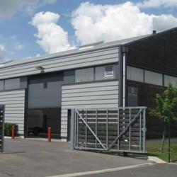 Location Local d'activités Cormeilles-en-Parisis 270 m²