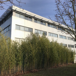 Location Entrepôt Bussy-Saint-Georges 411 m²