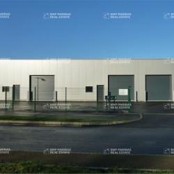 Location Local d'activités Bruz 155 m²