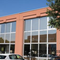 Location Bureau Blagnac 135 m²