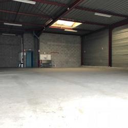 Vente Local d'activités Geispolsheim 680 m²