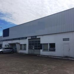 Location Local d'activités Saint-Jean-de-la-Ruelle 1170 m²