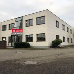 Vente Local d'activités Eckbolsheim 310 m²