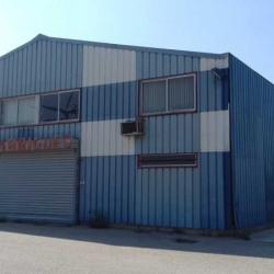 Vente Local d'activités Beaucaire 525 m²