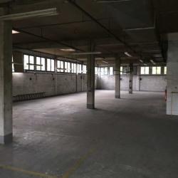 Vente Local d'activités Noisy-le-Grand 1216 m²