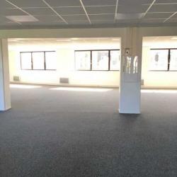 Location Bureau Lille 1010 m²