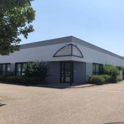 Location Bureau Sausheim 275 m²