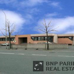 Location Local d'activités Argenteuil (95100)