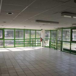 Vente Local d'activités Montpellier (34090)