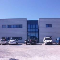 Location Bureau Pérols 394,46 m²