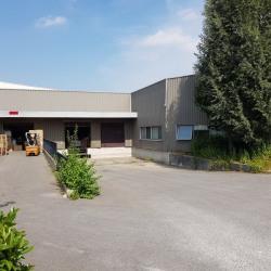 Vente Entrepôt Émerainville 3020 m²