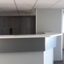 Location Bureau Toulouse 295 m²