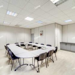 Location Local d'activités Chilly-Mazarin 412 m²