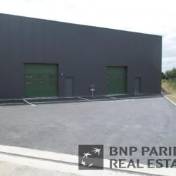 Vente Local d'activités Noyal-Châtillon-sur-Seiche 175 m²