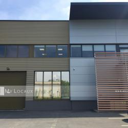 Vente Local d'activités Bailly-Romainvilliers 642 m²