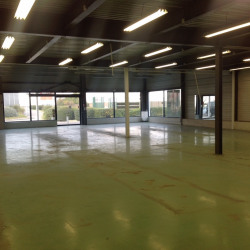 Location Local commercial Lattes 569 m²
