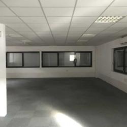 Vente Local d'activités Limonest 771 m²