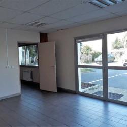 Location Local d'activités Le Plessis-Trévise 283 m²