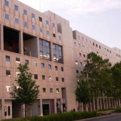 Location Bureau Lyon 3ème 34 m²