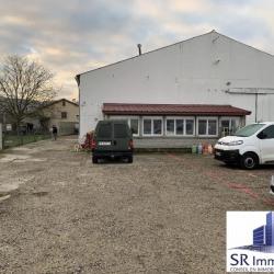 Vente Local d'activités Pérignat-sur-Allier 250 m²