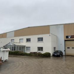 Vente Local d'activités Maurepas 1800 m²