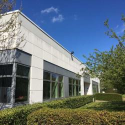 Location Local d'activités Élancourt 602 m²