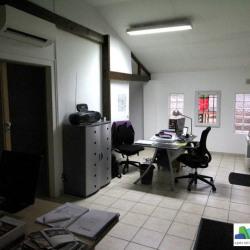 Location Local d'activités Villemomble 220 m²